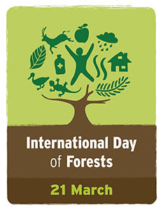 Spiritual Inspirations from Trees | Happy International Day of Forests | Speech on World Forest Day | World Forest Day Quotes image