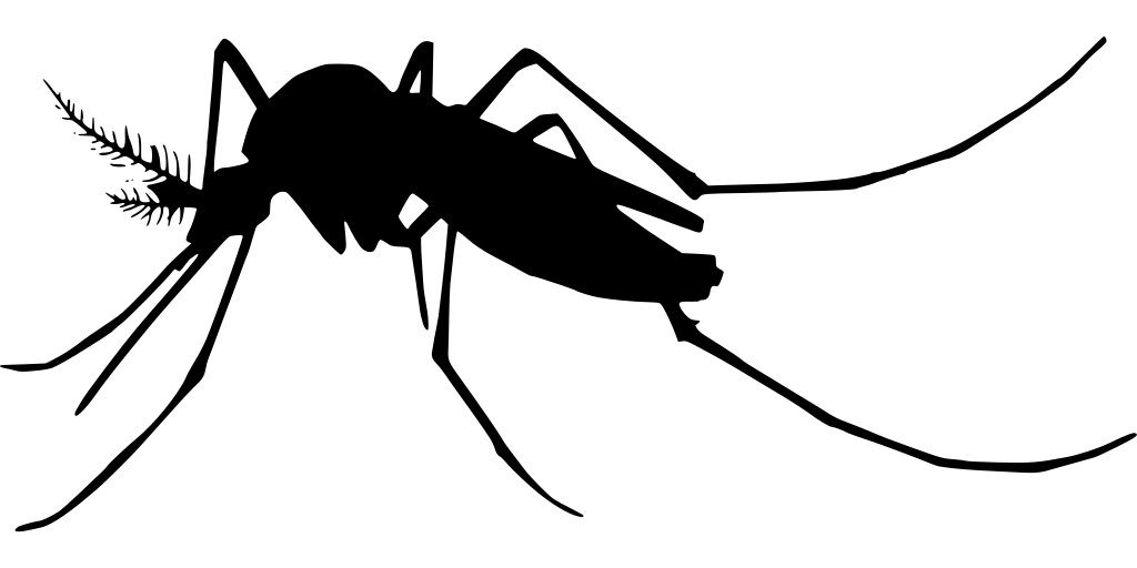 Spiritual Inspirations from Mosquitoes (World Mosquito Day) image