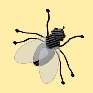 Spiritual Pest Control picture